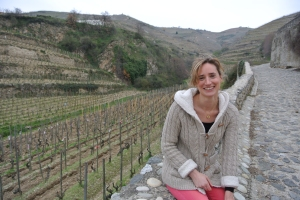 Tain L'Hermitage vineyards
