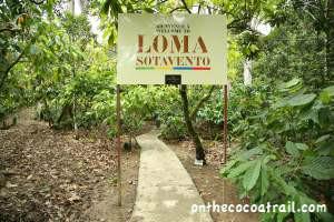 Loma Sotavento Cocoa Plantation