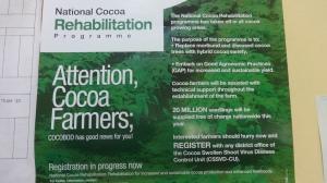 Cocoa programmes